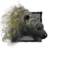 Junger Eisbär Icon.png