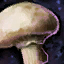 Pilz Icon.png