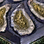 Frittierte Auster Icon.png