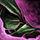 Orchideen-Stiefel Icon.png