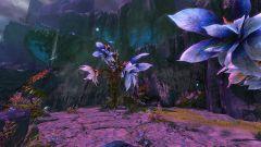 Geheimer Garten Guild Wars 2 Wiki