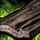 Antike Holzplanke Icon.png
