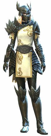 Beschützer-Rüstung – Guild Wars 2 Wiki